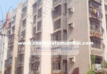 1 BHK Flat for Sale in Red Rose, Andheri West